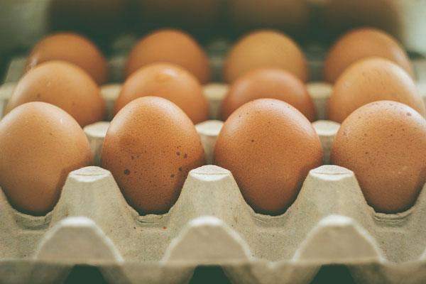 Is Egg Farming a Profitable Business?